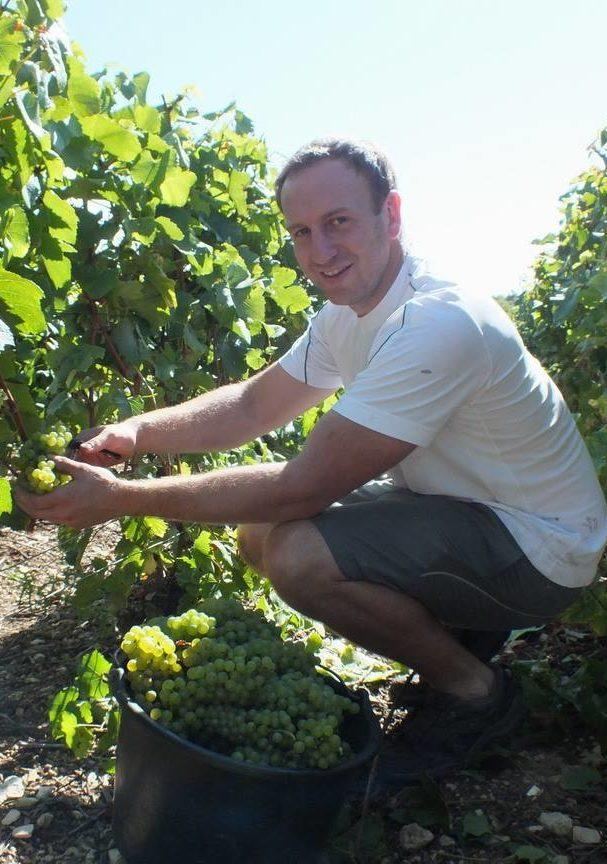 Champagne Jean Jacques Lamoureux - Vivien dans les vignes